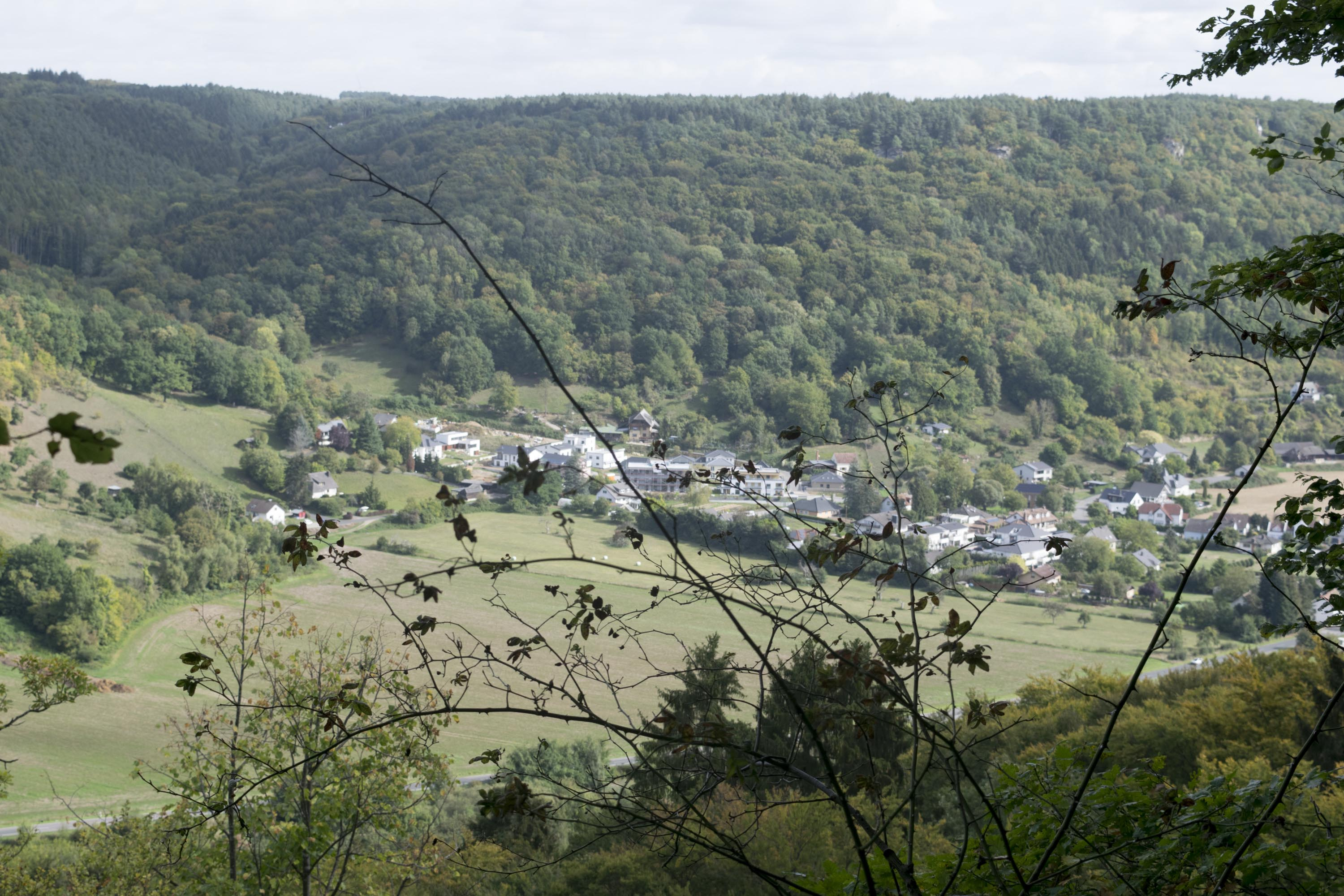 View from Mullerthal trail
