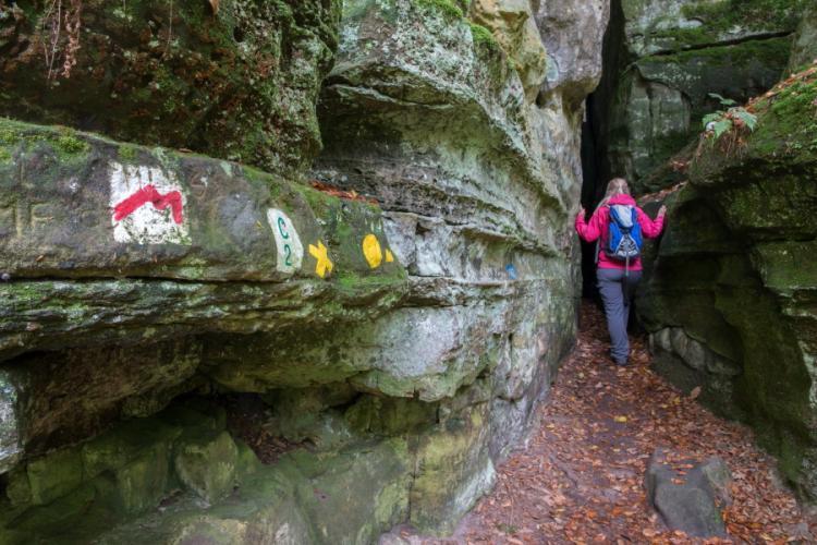 Wolfsschlucht in Mullerthal